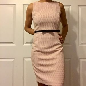 New the limited Pale pink dress with black bow